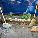 "<a href=""http://www.flickr.com/photos/orinrobertjohn/2779149859/"" title=""Many Brooms by Orin Zebest"